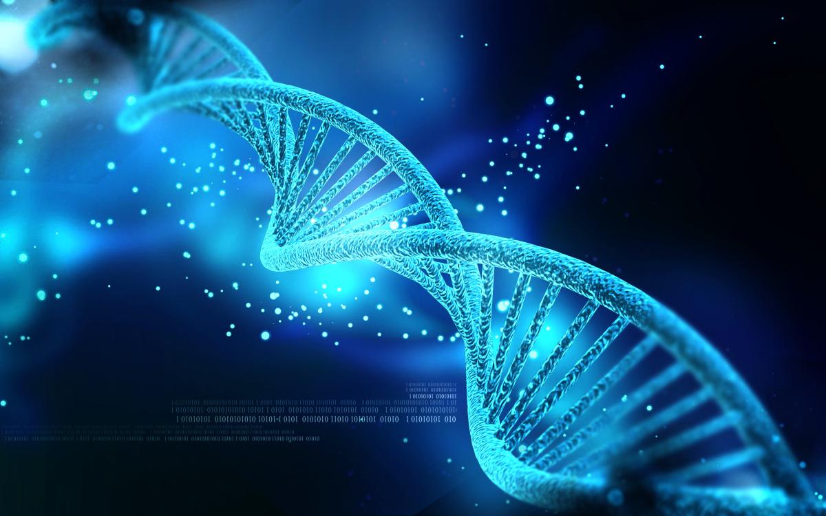 Д-р Брус Липтън: Вярата променя генетичният код и може да ни излекува от много болести